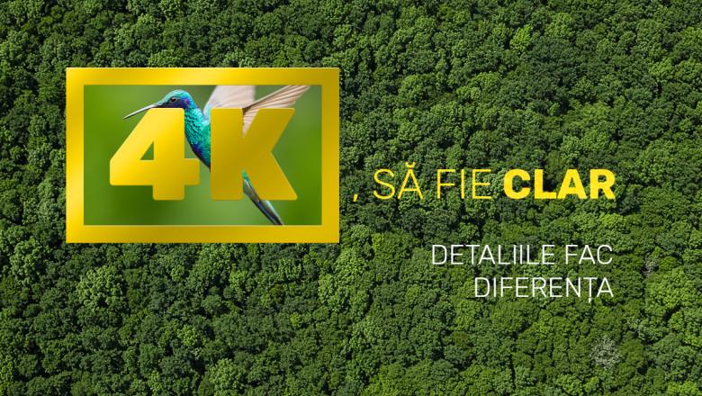 SaFieClar_FB_1200x1200 (1)