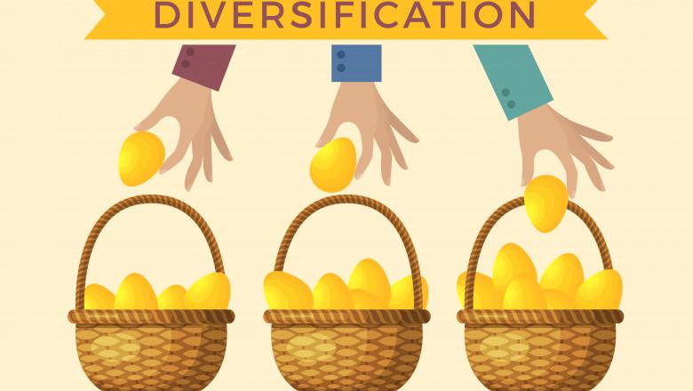 diversificarea investitiilor
