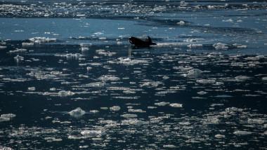 Fenomen fără precedent. Căldura-record din Siberia întârzie forrmarea gheții în zona arctică