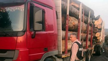 lemne-furate-primar-Vladesti