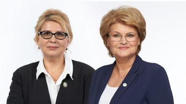 Pro Romania Botosani