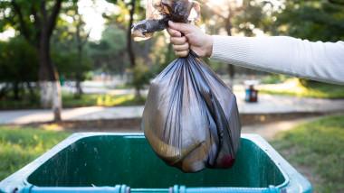 Comoara descoperită de doi britanici în sacii de gunoi din garajul lor