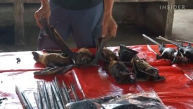 lilieci piata indonezia