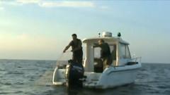 barca pesti eliberati