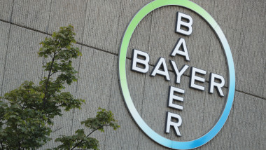Bayer Buys Monsanto