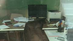 birou acte