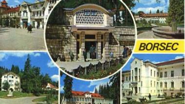 Demnitari de peste Prut, cu vile nedeclarate la Borsec