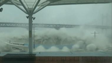 taifun coreea