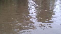 Inundatii com Smardan Galati 4 121016