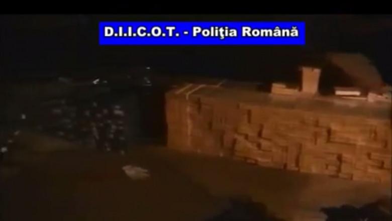 tigari Oradea