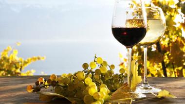vin pahare