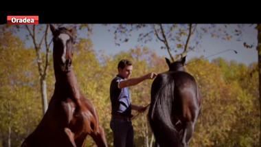 imblanzitor cai