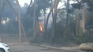 incendii israel