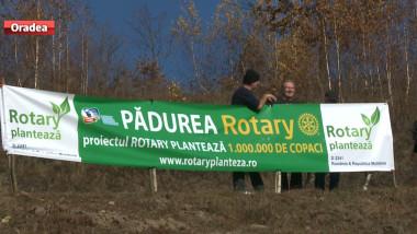 plantare Rotary