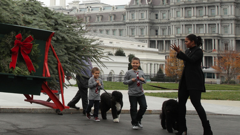 Michelle Obama Welcomes Official Christmas Tree To White House