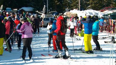 cavnic schi