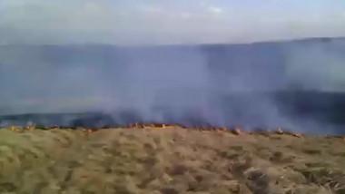 VO incendii Beius