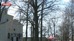 zoo capela