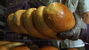 pâine, brutărie
