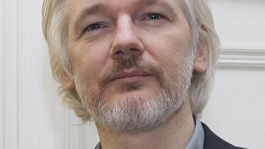 Julian_Assange_August_2014 crop