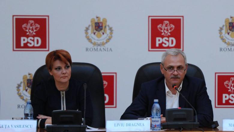Lia Olguta Vasilescu Liviu Dragnea facebook