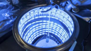 fotosinteza artificiala
