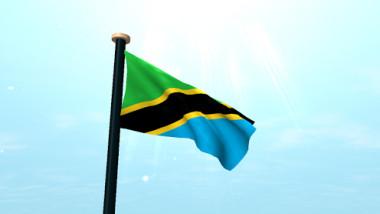 steag tanzania