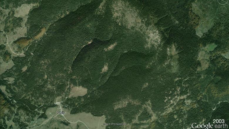 Usr Bihor Sesizări Pentru Despăduriri Care Se Văd Din Satelit