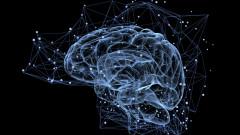 creier efectul mandela