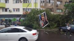 copac cazut Mosilor Eminescu 010617 (2)