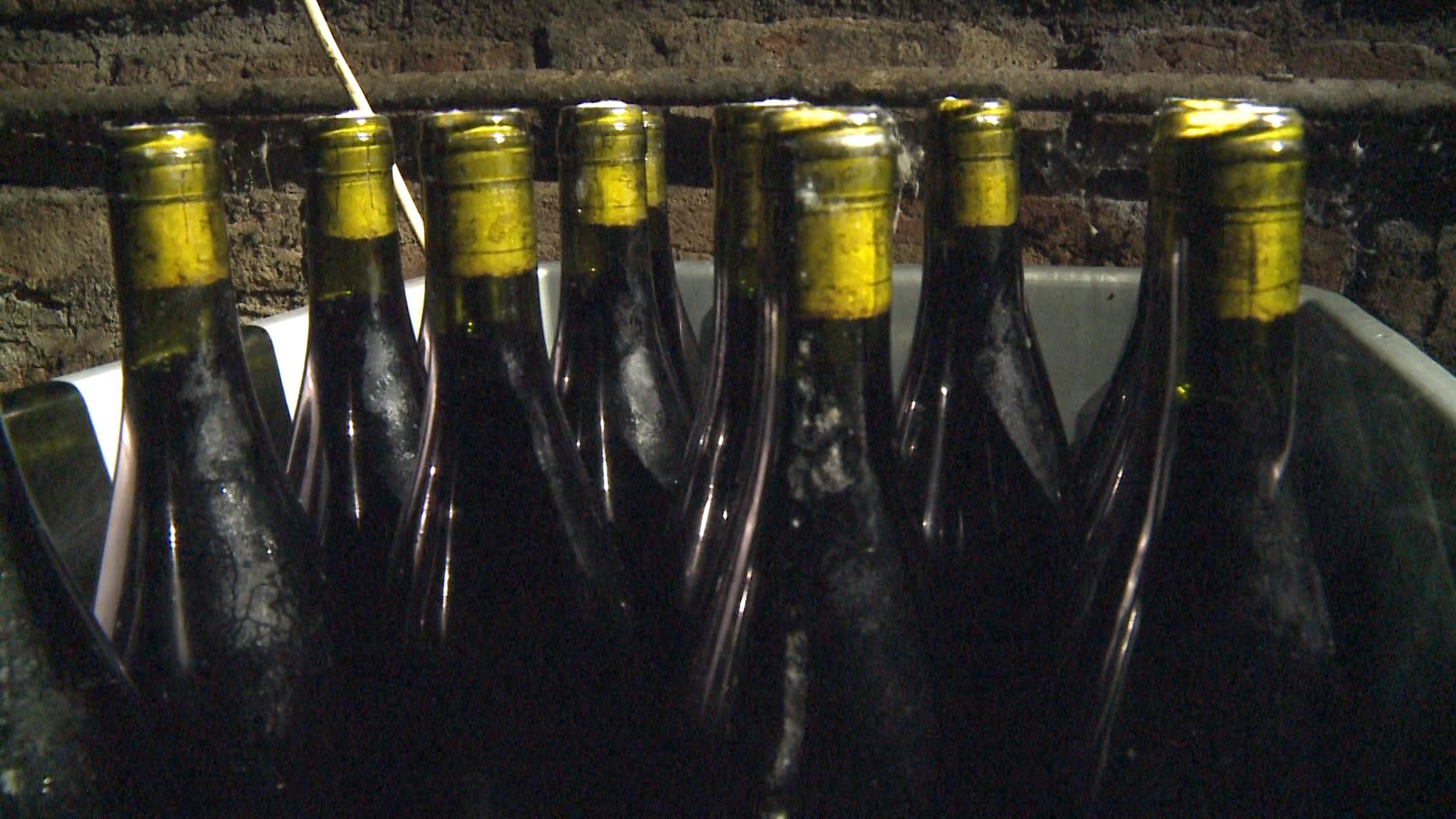 drumul vinului5