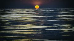 apus mare
