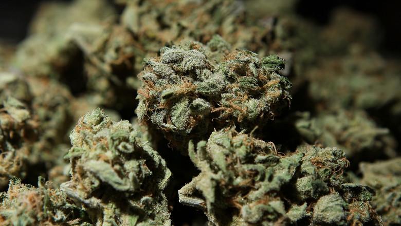 International Cannabis And Hemp Expo Held In San Francisco