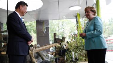 Xi Jinping Angela Merkel urs panda