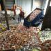 gunoi deseuri groapa de gunoi GettyImages-2872186