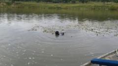 cautari Maramures baiat disparut scafandri (2)