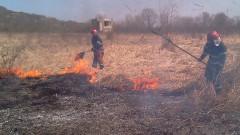 incendiu Forau (2)