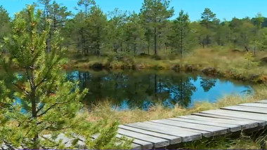 lac harghita