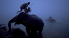elefanti apa nepal GettyImages-946131