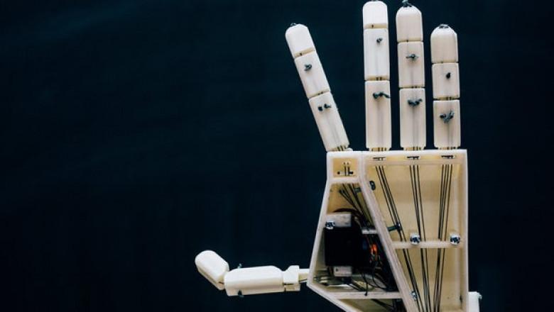 mana robot surdo-muti - proiectul aslan