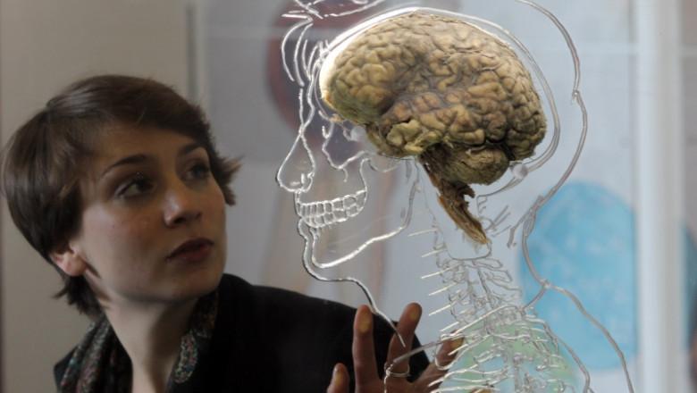 face bani cu creierul