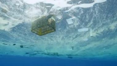 plastic in mare