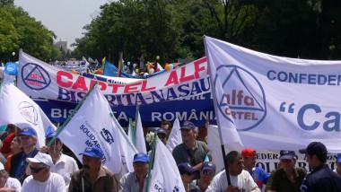 cartel alfa manifestatie fb