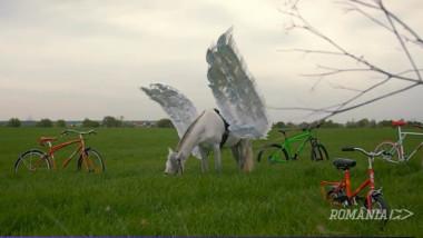calut pegas bicicleta