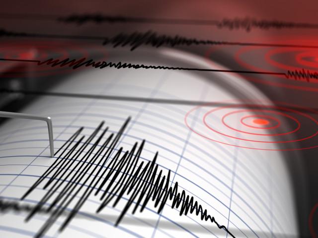 Cutremur cu magnitudine de 3,9 în Vrancea