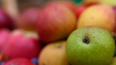 Quercitina, o moleculă naturală prezentă din abundență în mere sau ceapă, poate ucide coronavirusul. Descoperirea făcută în Spania