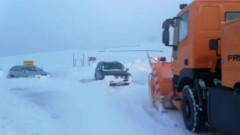 iarna ranca