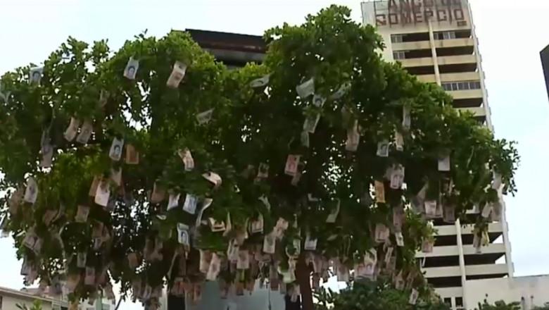 pom impodobit cu bani venezuela