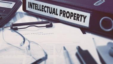 contract drepturi autor