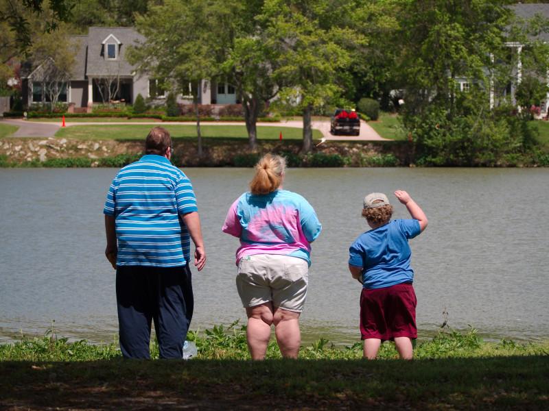 familie grasi obezi alimentatie nesanatoasa